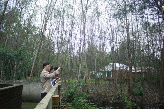 Cục Bảo vệ môi trường kiểm tra thực tế quanh nhà máy Hòa Phát Dung Quất ảnh 3