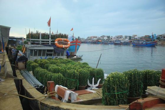 Những chuyến tàu 'chở tết' ra đảo Lý Sơn ảnh 1