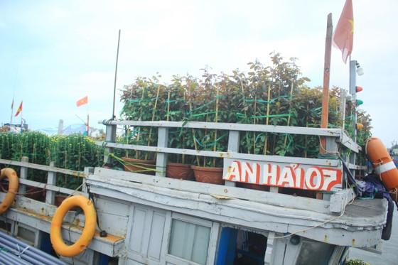 Những chuyến tàu 'chở tết' ra đảo Lý Sơn ảnh 5