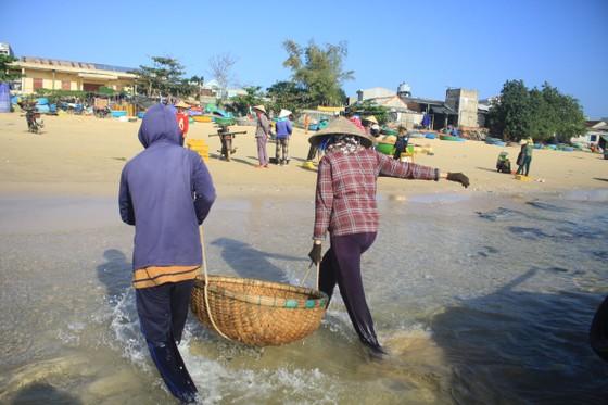 Ngư dân Quảng Ngãi trúng đậm mùa ruốc biển  ảnh 7