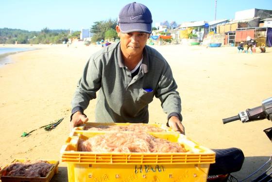 Ngư dân Quảng Ngãi trúng đậm mùa ruốc biển  ảnh 9