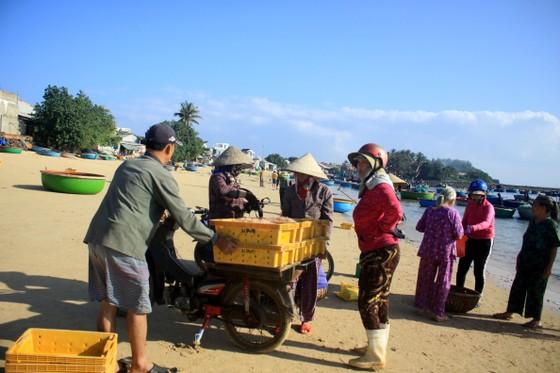 Ngư dân Quảng Ngãi trúng đậm mùa ruốc biển  ảnh 11