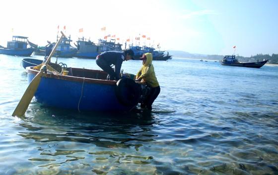 Ngư dân Quảng Ngãi trúng đậm mùa ruốc biển  ảnh 3
