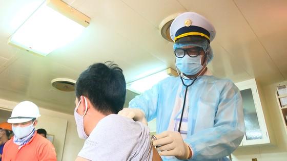 Kiểm soát dịch bệnh đối với các tàu nước ngoài xuất, nhập cảng Dung Quất (Quảng Ngãi)  ảnh 1