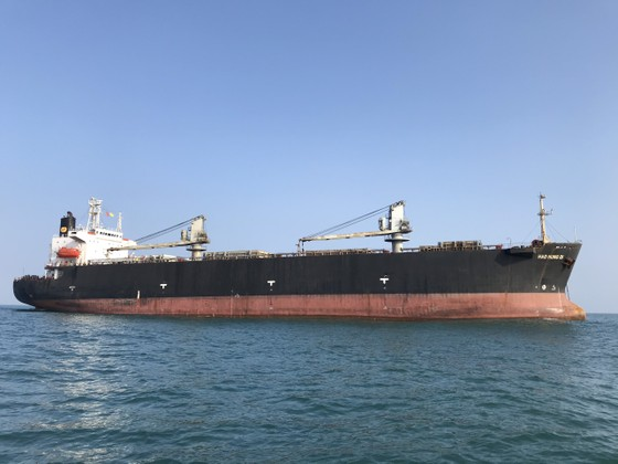 Kiểm soát dịch bệnh đối với các tàu nước ngoài xuất, nhập cảng Dung Quất (Quảng Ngãi)  ảnh 2