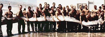 Cá hố dài 4m trôi dạt bờ biển Quảng Ngãi là một con Oarfish Thái Bình Dương khổng lồ ảnh 3