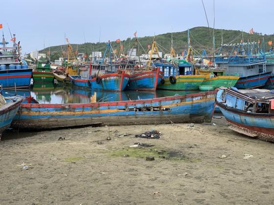 Giải pháp xử lý ô nhiễm môi trường từ xác tàu ở cảng cá Sa Huỳnh  ảnh 4