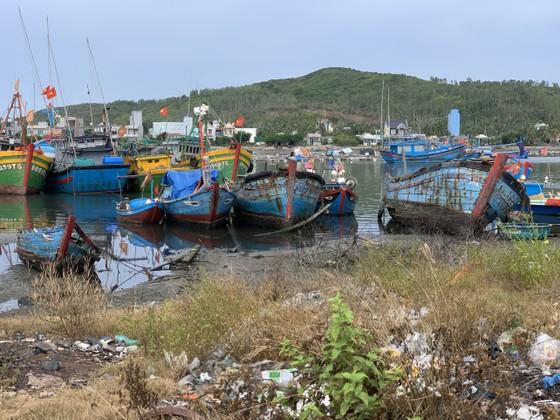 Giải pháp xử lý ô nhiễm môi trường từ xác tàu ở cảng cá Sa Huỳnh  ảnh 5