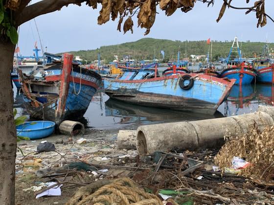 Giải pháp xử lý ô nhiễm môi trường từ xác tàu ở cảng cá Sa Huỳnh  ảnh 8