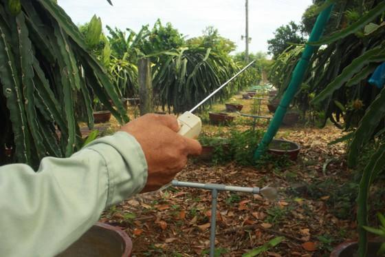 Nông dân Quảng Ngãi cải tiến thành công bộ tưới nước tự động 3 trong 1 ảnh 1