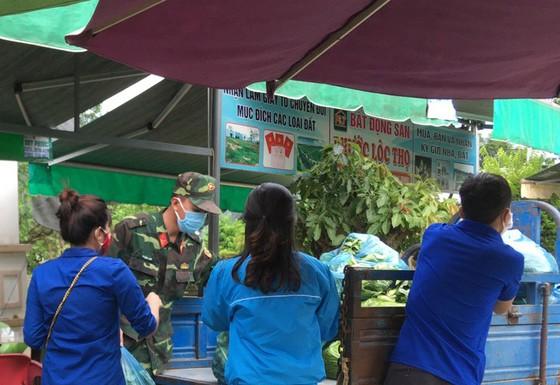 Nông dân hái rau hỗ trợ các khu cách ly ở Quảng Ngãi  ảnh 13