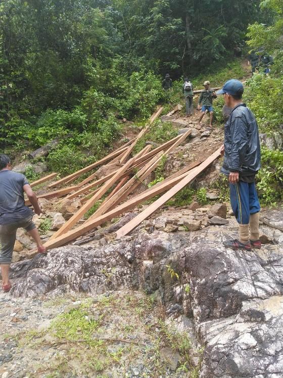 Quảng Ngãi: Đưa gỗ khai thác trái phép ra khỏi rừng, truy xuất camera 6 đối tượng liên quan ảnh 1