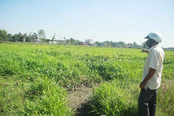 Quảng Ngãi: Nhà máy trong cụm công nghiệp Đồng Dinh gây ô nhiễm, người dân bức xúc ảnh 3