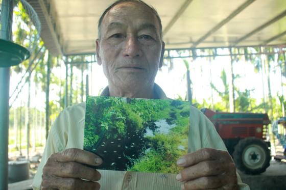Quảng Ngãi: Nhà máy trong cụm công nghiệp Đồng Dinh gây ô nhiễm, người dân bức xúc ảnh 4