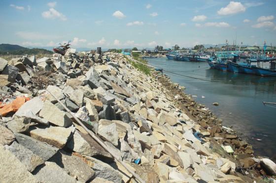 Quảng Ngãi khẩn cấp gia cố đê ở các cảng neo trú tàu thuyền trước mùa mưa bão ảnh 3