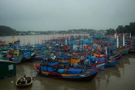 3 tàu cá của tỉnh Quảng Ngãi hỏng máy, trôi dạt chờ cứu hộ ảnh 1