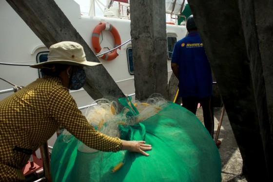 Quảng Ngãi khẩn trương neo trú tàu thuyền tránh trú bão số 9  ảnh 3