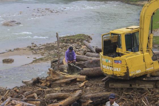 Quảng Ngãi: hàng chục khối gỗ theo lũ đổ về, người dân đổ xô đi vớt ảnh 3