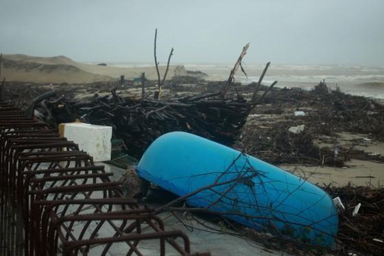 Củi khô bủa vây hơn 10km bờ biển Mỹ Khê, Quảng Ngãi ảnh 9