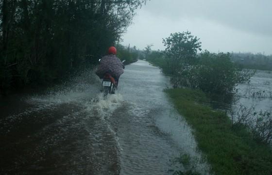 Huyện đảo Lý Sơn xuất gạo cấp người dân đảo Bé ứng phó bão số 13 ảnh 4