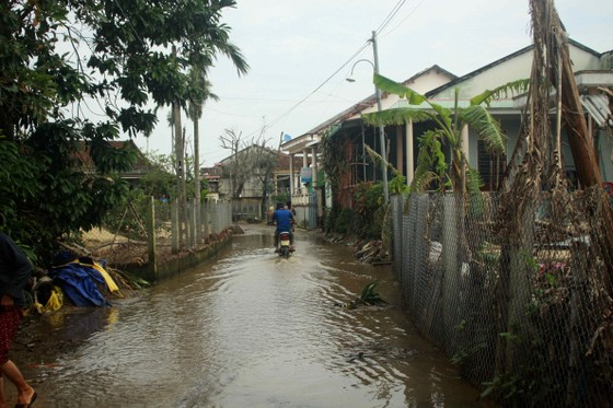 Xóm ốc đảo sông Trà Bồng khắc phục sau lũ ảnh 4