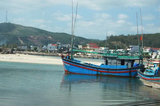 Quảng Ngãi: Hàng trăm tàu cá không thể ra khơi vì luồng lạch bị bồi lấp ảnh 4