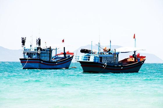 3 ngư dân Quảng Ngãi tử vong chưa rõ nguyên nhân ảnh 1