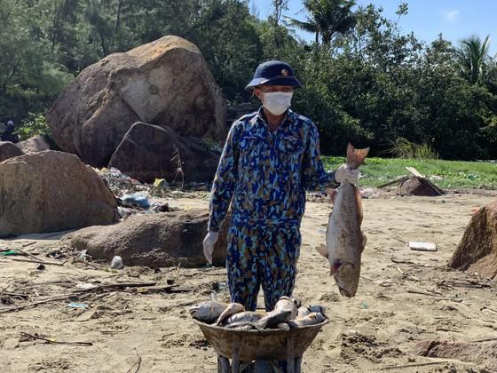 Quảng Ngãi: Chôn lấp hơn 5 tấn cá nuôi lồng bè bị chết sau bão số 5 ảnh 11