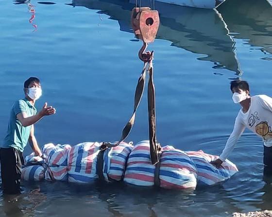 Xác cá voi nặng 700kg trôi dạt vào đảo Lý Sơn ảnh 2