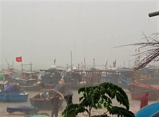 Quảng Ngãi cấm tàu thuyền ra khơi từ 11 giờ ngày 23-9  ảnh 2