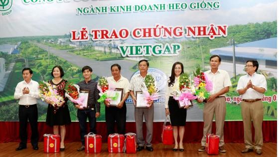 40 trang trại hợp tác với CP Việt Nam đạt chứng nhận VietGAP ảnh 1