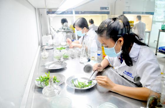 Để TPHCM trở thành trung tâm sản xuất giống của khu vực ảnh 1
