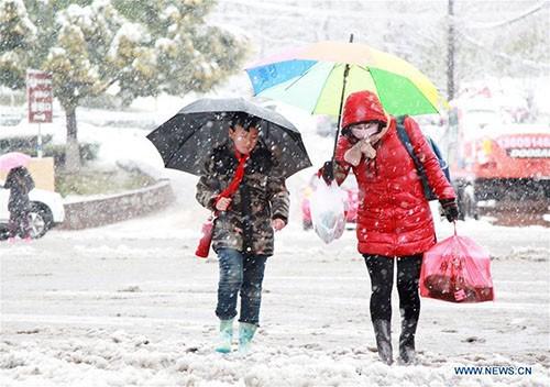 Tuyết rơi dày làm tăng giá rau quả ở Trung Quốc ảnh 1
