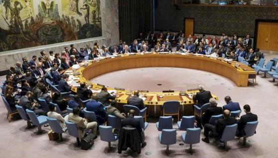 HĐBA LHQ không thông qua dự thảo nghị quyết của Nga lên án các cuộc tấn công Syria  ảnh 1