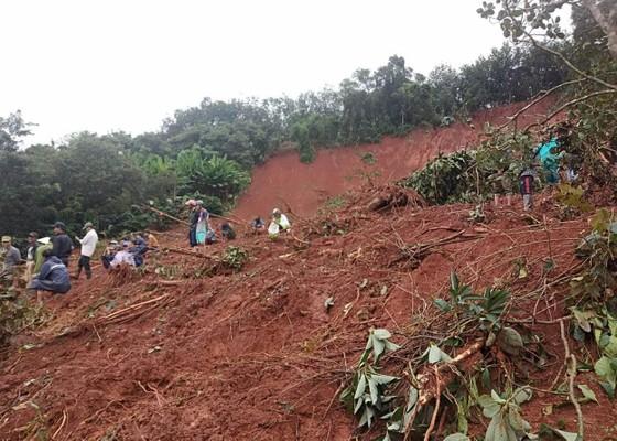 Sạt lở đất ở Đắk Nông, 3 người trong một gia đình bị chôn vùi ảnh 4