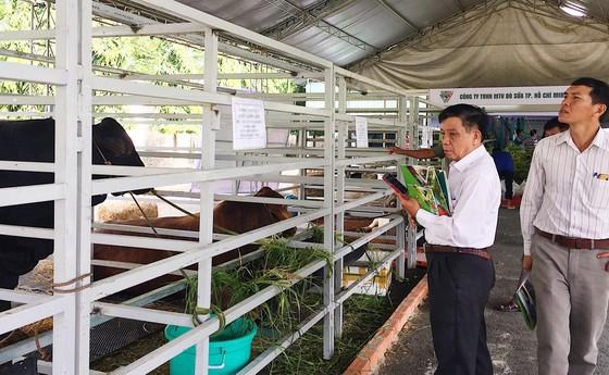 Hơn 350 gian hàng tại Hội chợ - Triển lãm 'Giống và nông nghiệp công nghệ cao'  ảnh 2