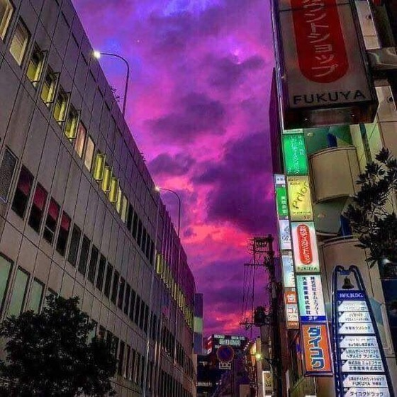 """Nhật Bản 'nín thở"""" trước siêu bão Hagibis sẽ đổ bộ cấp mạnh nhất ảnh 2"""