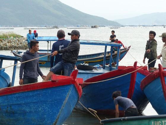 Người nuôi hải sản ở Phú Yên xuất bán tôm hùm trước khi bão số 5 đổ bộ ảnh 5