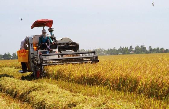Cơ giới hóa nông nghiệp, nâng cao giá trị sản phẩm ảnh 1