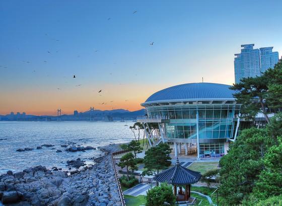 Tổng cục Du lịch Hàn Quốc tổ chức Tuần lễ chào đón khách du lịch các nước ASEAN 2019 ảnh 1