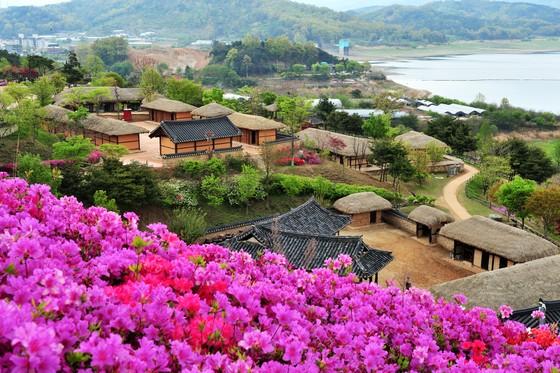 KTO tổ chức cuộc thi 'Relive Your Korea Trip' với nhiều giải thưởng hấp dẫn ảnh 1