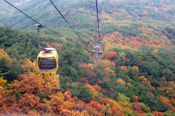 Du lịch Hàn Quốc kỳ vọng sẽ đón khách trở lại vào cuối năm 2020 ảnh 2