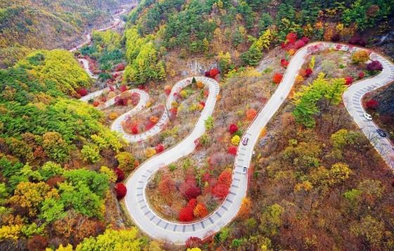 Du lịch Hàn Quốc kỳ vọng sẽ đón khách trở lại vào cuối năm 2020 ảnh 1