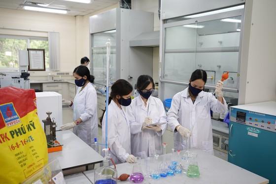 DPM: Sản xuất kinh doanh phân bón và hóa chất tăng mạnh ảnh 1