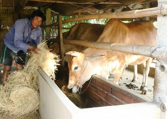 Mang xuân ấm đến đồng bào Khmer  ảnh 1
