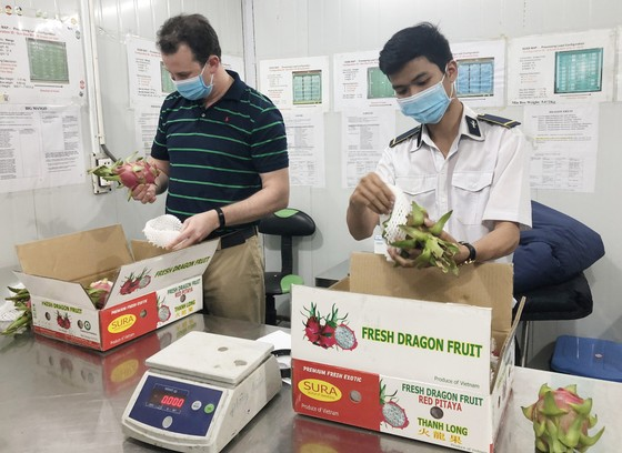 Trái cây Việt được thế giới ưa chuộng   ảnh 1