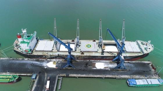 PVFCCo xuất khẩu nhiều đơn hàng phân bón với khối lượng lớn nhất từ trước tới nay ảnh 1