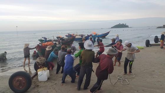 Mùa lưới cá trích ở thành phố biển Vũng Tàu ảnh 1