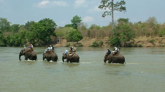 大象之都 ── 板敦 ảnh 1
