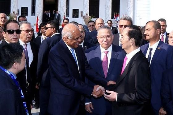 越南重視保持與埃及友好關係 ảnh 1